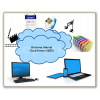 Annual - Business Cloud Service
